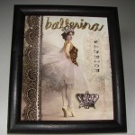 ballerina warrior princess (1)